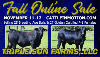 "SS-Triple Son Farms LLC. ""Heart of The Heard"" Fall Online Sale - 11-11/12-2020"