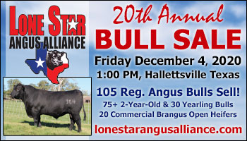 SS-Lone Star Angus Alliance 20th Annual Bull Sale-12-04-2020