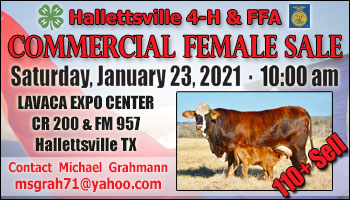 SS-Hallettsville 4-H & FFA Commercial Female Sale-01-23-2021