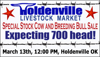 SS-Holdenville Livestock Market Special Stock Cow & Breeding Bull Sale-04-24-2021