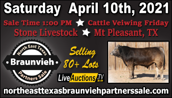SS-North East Texas Braunvieh Partners Sale-04-10-2021