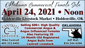 SS-Holdenville Livestock Market Special Stock Cow & Breeding Bull Sale-04-24-2021