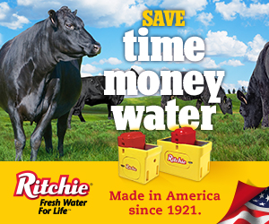 Ritchie Page Banner Ad
