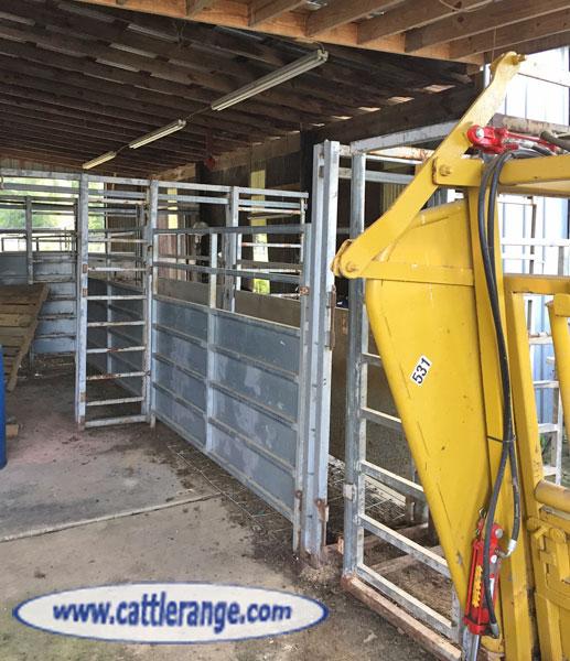 Cattle Range Classified Image
